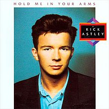 Hold Me in Your Arms (Rick Astley album).jpg