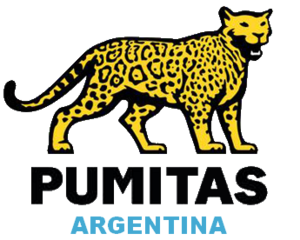 Argentina national under-20 rugby union team - Image: Pumitas Argentina rugby logo