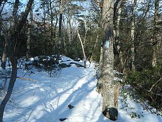 Shenipsit Trail