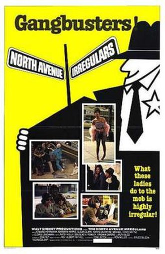 The North Avenue Irregulars - Theatrical release poster