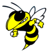 Yellowjacket.png