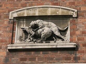 Dogue de Bordeaux - Sculpture of a Dogue de Bordeaux in the act of wolf-baiting from the Muséum national d'histoire naturelle