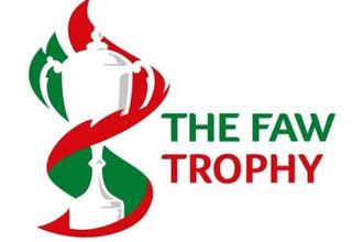 FAW Trophy - Image: Faw welsh trophy logo