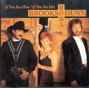 If You See Him/If You See Her - Image: If You See Her Brooks Reba