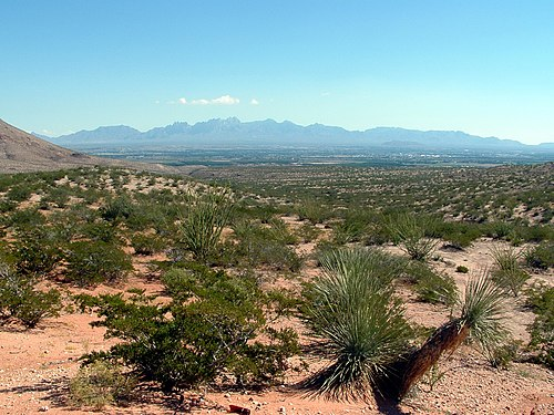 The Mesilla Valley as seen from Las Cruces' west mesa. Mesilla valley.JPG