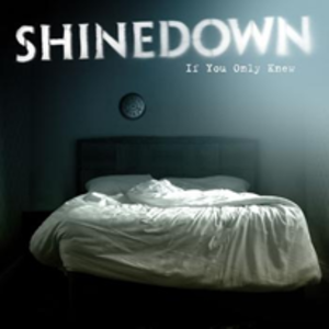 If You Only Knew (Shinedown song) - Image: Shinedown if you only knew
