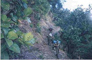 Special Frontier Force - Special Frontier Force training