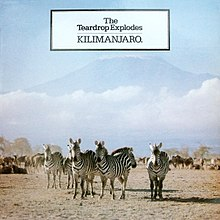 "The ""Mount Kilimanjaro"" cover"