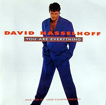 You Are Everything by David Hasselhoff.jpg