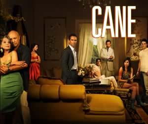 Cane (TV series) - Image: Cane (TV show cast shot)