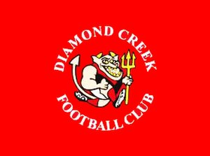Diamond Creek Football Club - Image: Diamond Creek Logo