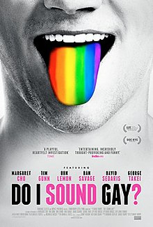 Do I Sound Gay poster.jpg