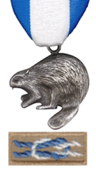 Silver Beaver Award - Medal and knot