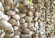 A wall made from coconut husks.