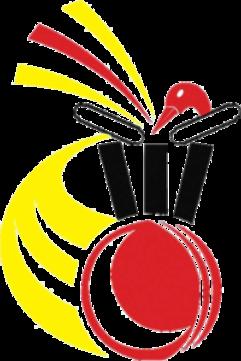 Cricket PNG