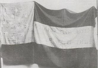 16th Arkansas Infantry Regiment - Flag of the Joe Wright Guards, Company D, 16th Arkansas