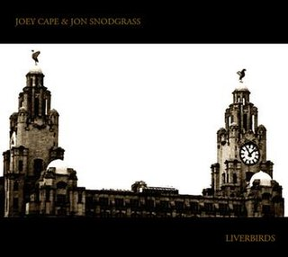 <i>Liverbirds</i> (album) 2010 studio album by Joey Cape and Jon Snodgrass