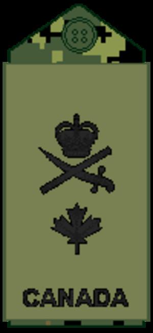 Commodore (Canada) - Image: Navy olive Cmdre