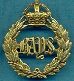 Queen's Bays Cap Badge.jpg