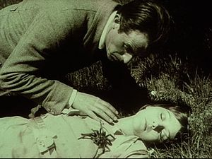 Calling card (crime) - A spider is the calling card for the criminal gang in Fritz Lang's 1919 film, The Spiders