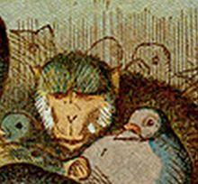 pat alices adventures in wonderland wikipedia
