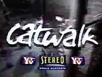 Catwalk (TV series)