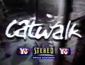 Catwalk (TV series) - Image: Catwalkseriesintro