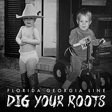 Image result for dig your roots album