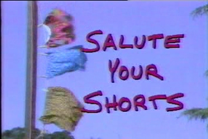 Salute Your Shorts - Title Card