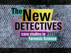 The New Detectives Wikipedia