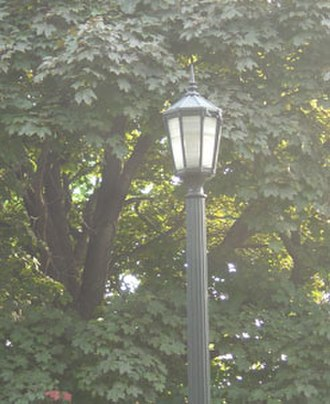 Victory, Minneapolis - A vintage streetlight shines over Victory Memorial Drive