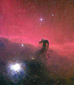 David Malin - Three-colour photograph of the Horsehead Nebula taken by David Malin at the AAO