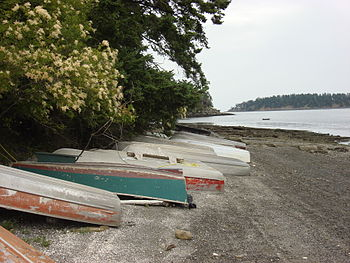 Old boats ashore on low tide in Mayne Isalnd