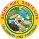 Official seal of Santa Rita