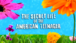 The secret life of the america teen
