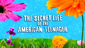 The Secret Life of the American Teenager - Image: TSLAT title
