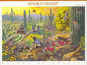Nature of America - Image: 1999 Sonoran Desert stamp sheet