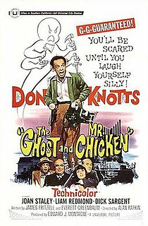<i>The Ghost and Mr. Chicken</i> 1966 film by Alan Rafkin