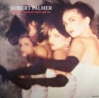 I Didn't Mean to Turn You On - Image: It Didn't Mean to Turn You On by Robert Palmer