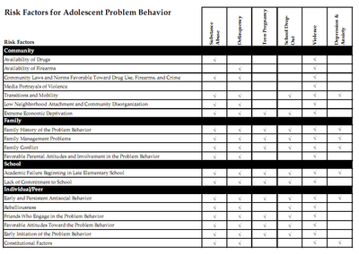 Risk Factors for Adolescent Problem Behavior Chart