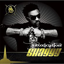 Shaggy - Intoxicaton - Cover(front).jpg