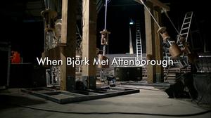 When Björk Met Attenborough - Title card
