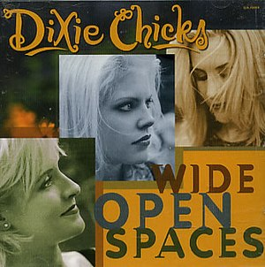 Wide Open Spaces (song) - Image: Wide Open Spaces (Dixie chicks single) cover art