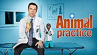 Picture of a TV show: Animal Practice