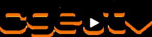 CgeTV - Image: Cge TV logo