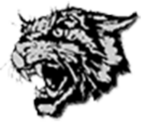 East Chapel Hill High School - Image: East Chapel Hill High School logo
