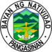 Official seal of Natividad