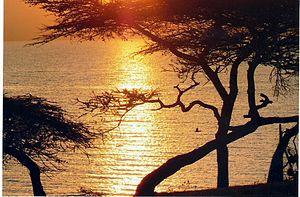 Lake Langano - Sunrise over Lake Langano.