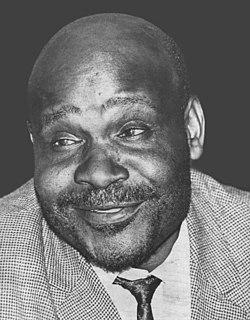 Thomas Nkobi South African politician