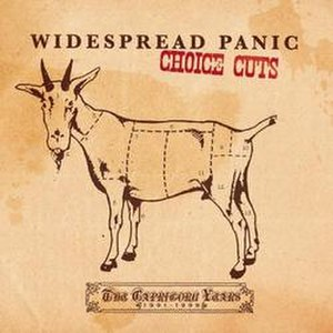 Choice Cuts: The Capricorn Years 1991–1999 - Image: Choicecutscover
